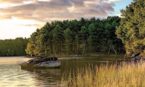 Read about Great Bay, and much more, in the Spring/Summer issue of UNH Magazine.